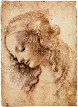 Leonardo da Vinci, The hundred most beautiful drawings from coll